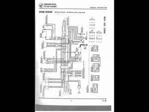 1986 Honda Reflex Tlr200 Help - Honda