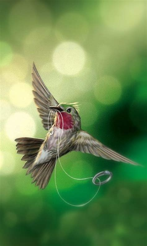 bird wallpapers android apps apk   android
