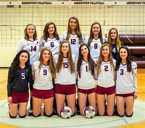 Morristown volleyball team posted second straight division ...