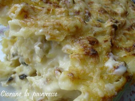 gratin des pates au bechamel gratin de p 226 tes au fromage la cuisine de quat sous