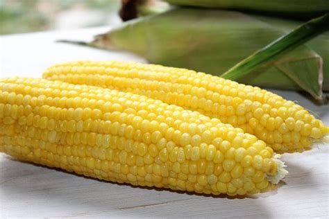 steam corn 4 minute steamed corn on the cob big bear s wife