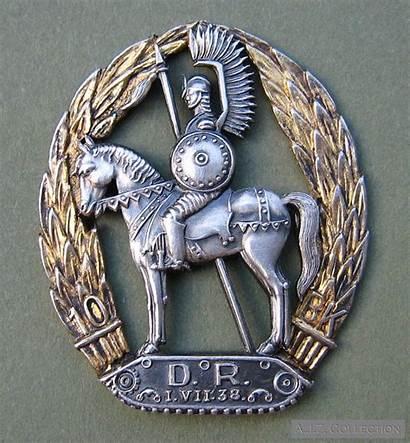 Ww2 Polish Badges Regimental