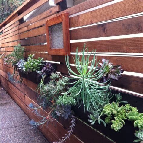 hanging wall garden 1000 images about hanging garden ideas on