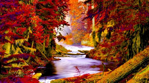 autumn forest creek wide wallpaper  wallpaperscom