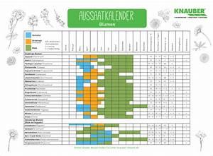 Aussaatkalender 2017 Pdf : kalender f r die aussaat von blumen knauber weltknauber welt ~ Whattoseeinmadrid.com Haus und Dekorationen