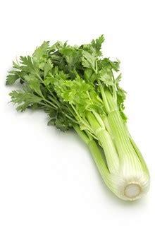 cuisiner celeri branche les bienfaits du céleri iterroir