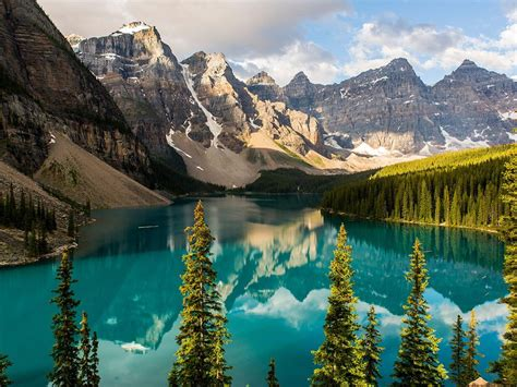 lake mountain banff canada mountains trees jasper parkway icefields mural wall evergreen alberta majestic moraine rugged forests national park murals