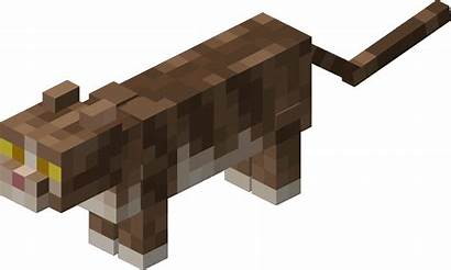Minecraft Cat Chat Tabby Cats Wool Mobs