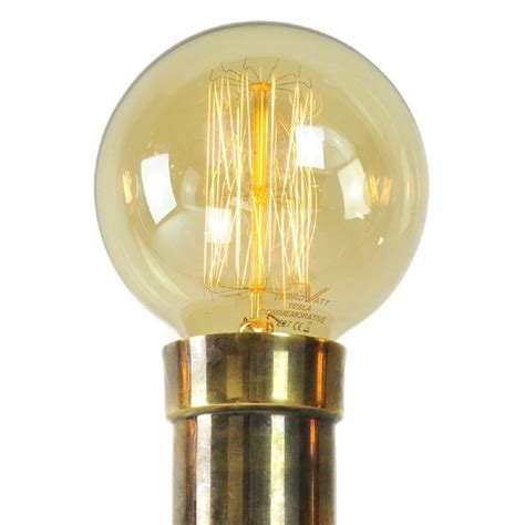 tint vintage edison light bulb globe shape with
