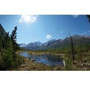 Summer Mountain Lake Forest Snow Peaks Desktop Wallpaper