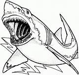 Shark Coloring Awesome Printable Pages Coloringonly Cool Colouring Adults Boys Unique Whale Promise sketch template