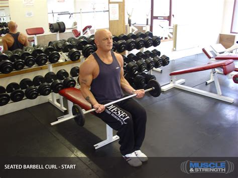 Seated Barbell Curl Video Exercise Guide & Tips