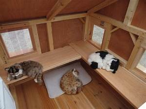 25 best ideas about heated outdoor cat house on pinterest With best dog door for winter
