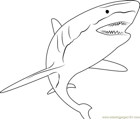 Coloring Ikan by Shark Attack Coloring Page Free Shark Coloring Pages