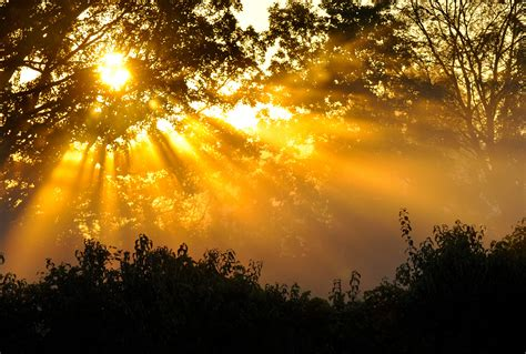 times  sun  michigan   beautiful place
