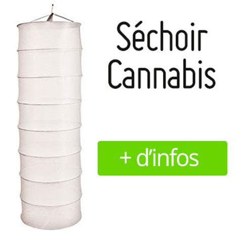 chambre de sechage cannabis tutos comment réussir le séchage et le curing de votre