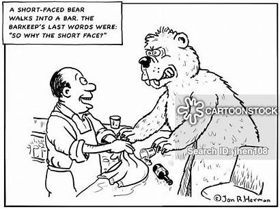 Jokes Bar Cartoon Grizzlybear Cartoons Funny Bear