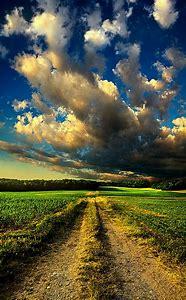 Beautiful Country Dirt Road