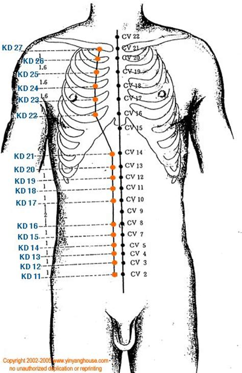 acupuncture grossesse si e 267 best meridians energy pathways images on