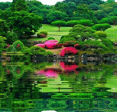 Jardines Movimiento Imagenes Hermosos Flores Paisajes Bellos