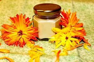 Ringelblumen Creme Selber Machen : ringelblumensalbe rezept zum selber machen selbst herstellen ~ Frokenaadalensverden.com Haus und Dekorationen