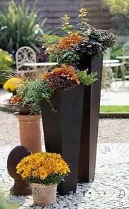 Bäume In Kübeln : herbstbepflanzung f r t pfe und k bel gardens planters ~ Lizthompson.info Haus und Dekorationen