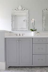 Gray Dual Bathroom Vanity - Transitional - Bathroom