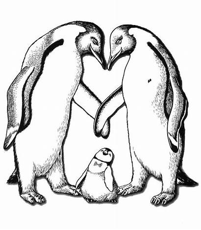 Coloring Feet Happy Pages Animals Colouring Penguin