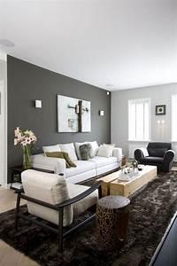 Light Und Living : peinture salon grise 29 id es pour une atmosph re l gante our new house pinterest ~ Eleganceandgraceweddings.com Haus und Dekorationen