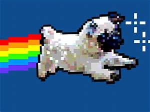 Nyan GIFs - Find & Share on GIPHY