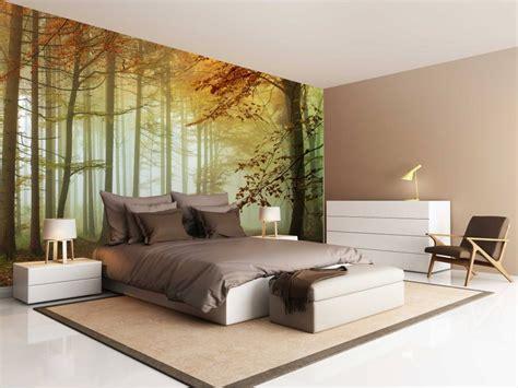 fotobehang bos zonsondergang herfst  walldesigncom