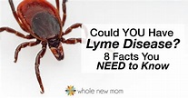 What is Lyme Disease? 8 Facts You Need to Know
