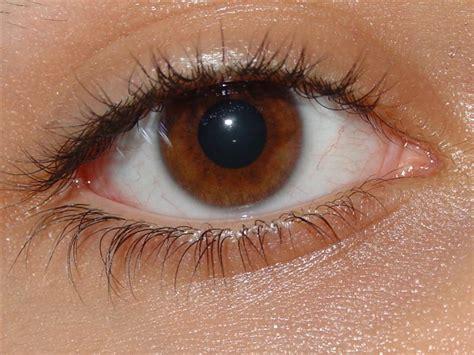 Heterochromic Macro Eyes
