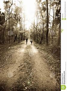 Two People Walking In Forest Stock Photo - Image of people ...