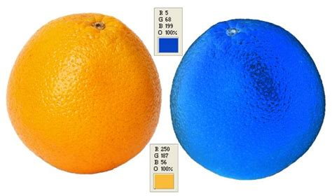 what color is an orange what color is an orange science 2 0