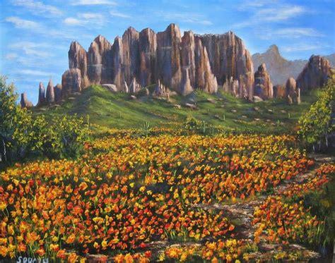 superstition mountains  wildflowers  stephen davis