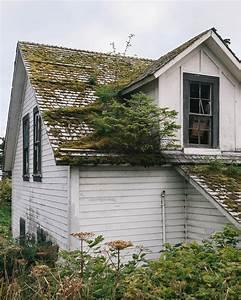 Auf Dem Dach : kleine paradiese auf dem dach sweet home ~ Frokenaadalensverden.com Haus und Dekorationen