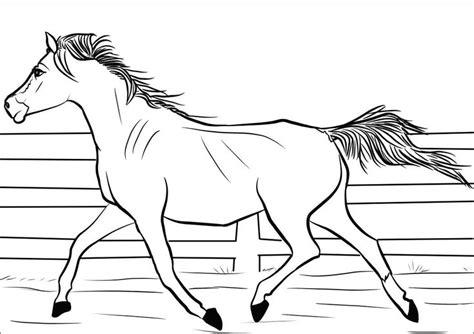 foto de Arabian Mare coloring page Desenho de Égua Árabe para