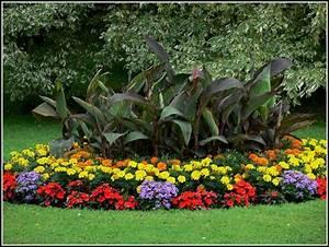Www Mein Schöner Garten : mein schoener garten garten house und dekor galerie 37a6a60gdk ~ Frokenaadalensverden.com Haus und Dekorationen