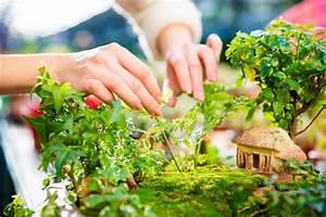 Jardin Japonais Interieur : comment faire un jardin japonais chez soi habitatpresto ~ Dallasstarsshop.com Idées de Décoration