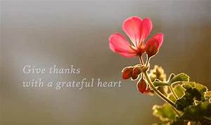 Give Thanks With A Grateful Heart - Bible Study Times