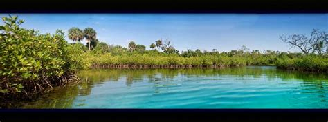 Rare Florida Scenery, A Photo From Florida, South Trekearth