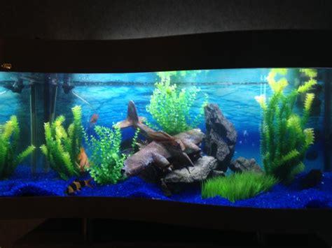 aquarium opening times 28 images s e a aquarium admission e ticket attractions xpress one