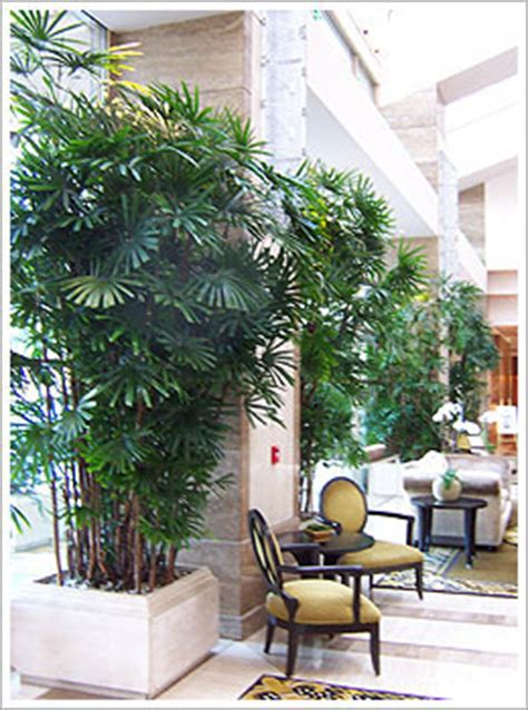 office plant service commercial plant service