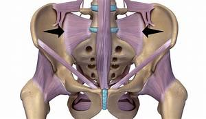 Radiofrequency Neurotomy Information For Sacroiliac Joint Pain