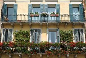 Kletterpflanzen Für Balkon : kletterpflanzen auf dem balkon als sichtschutz ~ Buech-reservation.com Haus und Dekorationen
