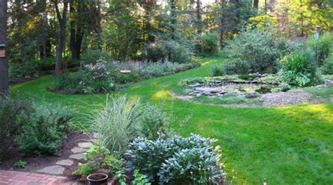 sustainable natural landscaping gardening  landscape