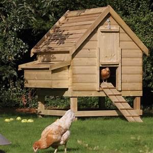 3 6 birds large chicken coop nest box westmount living