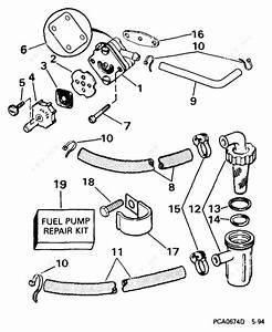 Evinrude 1999 8 - E8wrlees  Fuel Pump