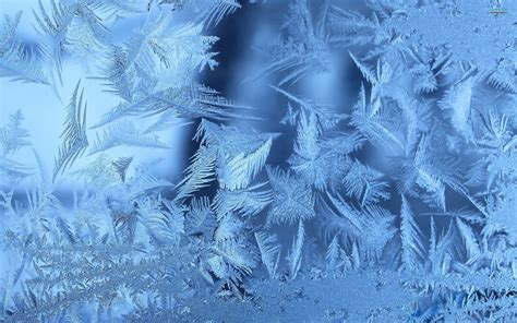 Ice Wallpaper ·① Download Free Awesome Hd Backgrounds For